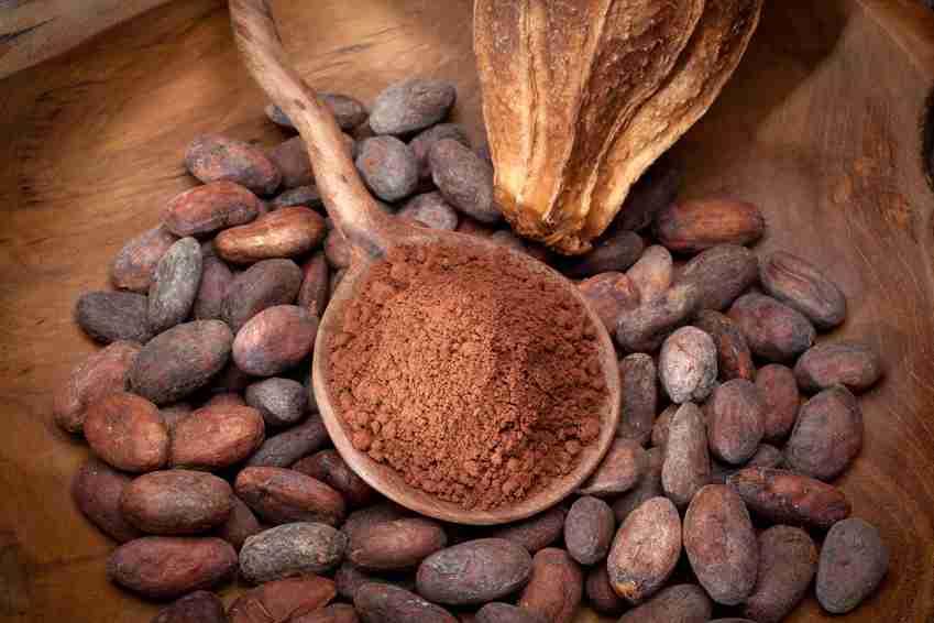 Il Cacao fra i Superfood che allungano la vita