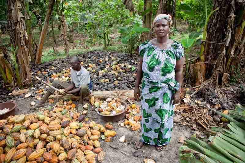 Il lavoro delle donne nelle zone di produzione del cacao.