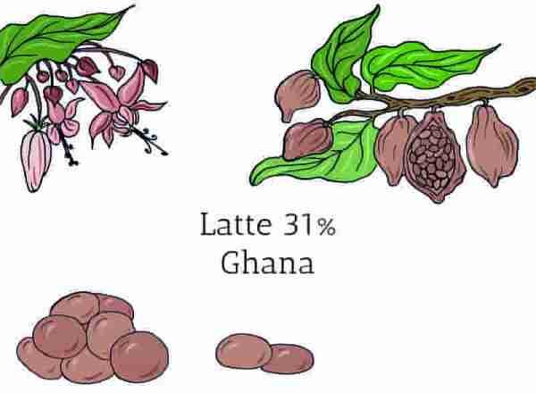 Cioccolato al latte in gocce Ghana 31%