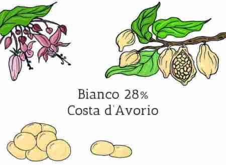Cioccolato bianco in gocce 28% Costa d'Avorio