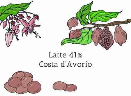 Cioccolato in gocce latte 41% Costa d'Avorio