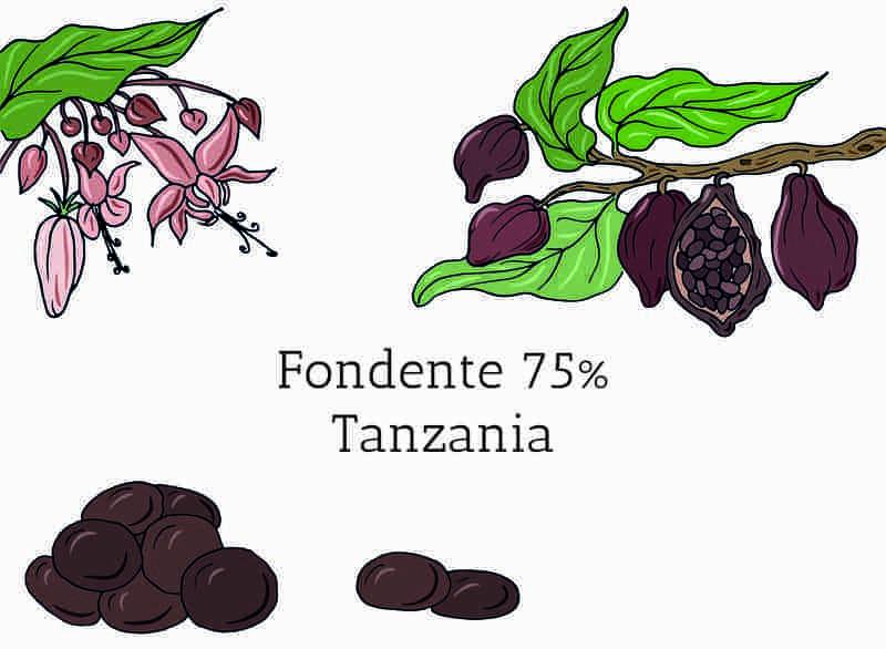 Cioccolato Fondente in gocce Tanzania 75%