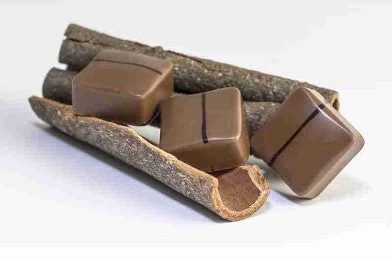 Cioccolatini alla Cannella
