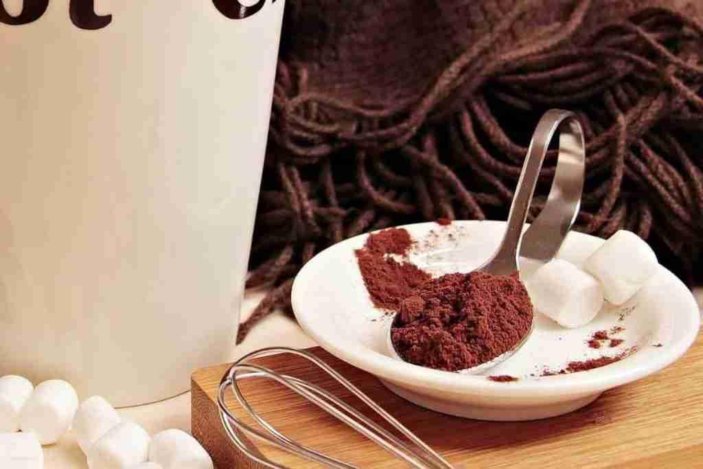 Van Houten, la polvere di cacao ed il burro cacao